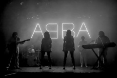 The-Super-Troupers-South-West-Abba-Tribute-for-Hire-1