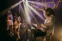 The-Super-Troupers-South-West-Abba-Tribute-for-Hire-8
