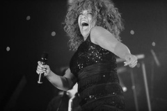 Tina-Turner-Tribute-Hire-from-Richer-Music-14